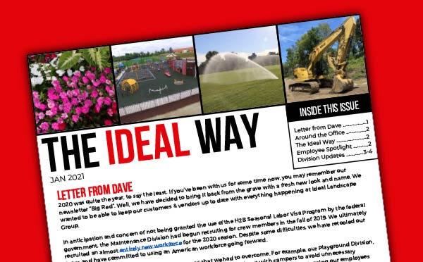 the-ideal-way-newsletter